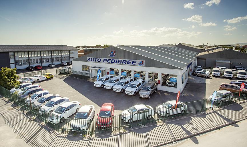 Auto Pedigree Paarden Eiland  dealer image0