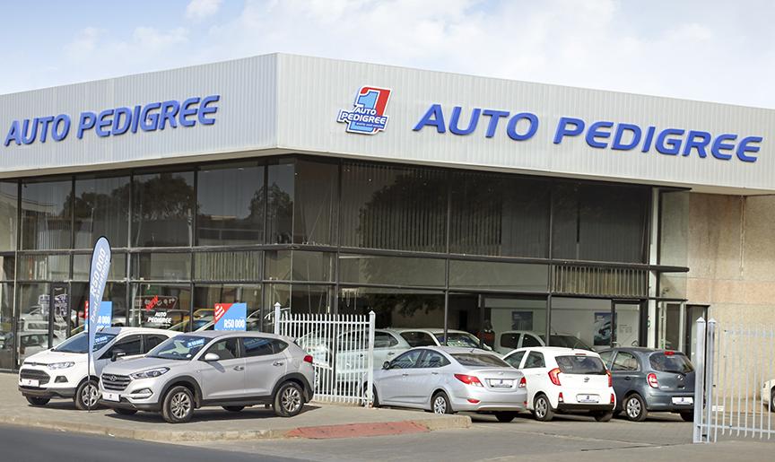 Auto Pedigree Bloemfontein Zastron St dealer image0