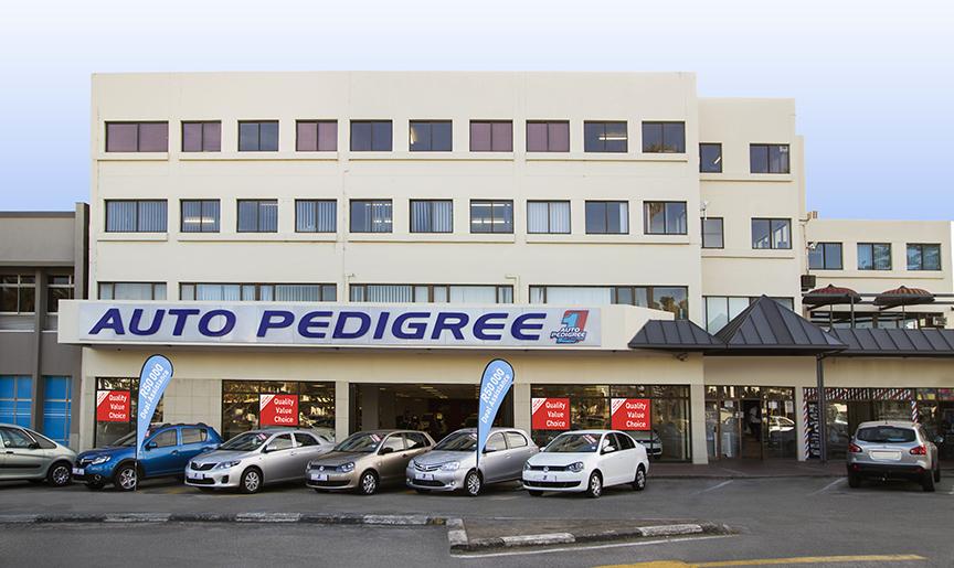 Auto Pedigree George