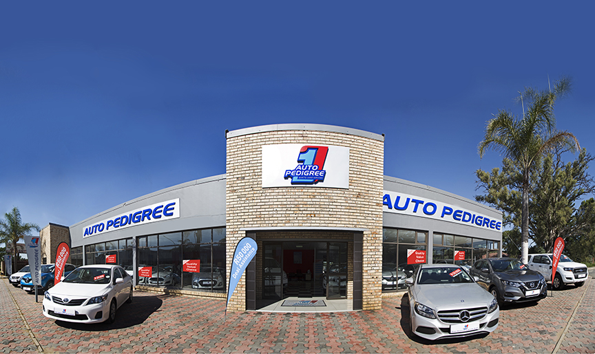 Auto Pedigree Ladysmith