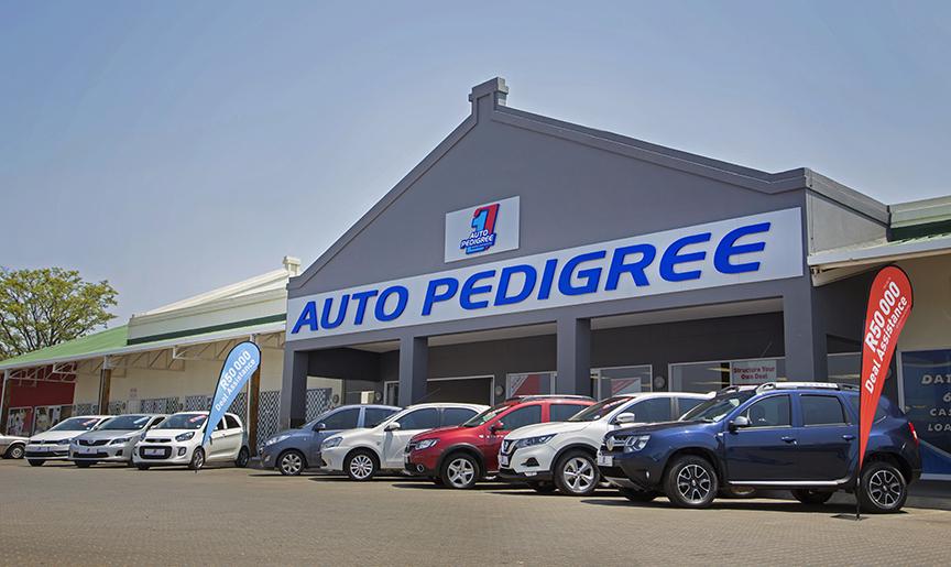 Auto Pedigree Modimolle  dealer image0